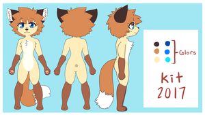 Kit 2017 Reference by shgurr