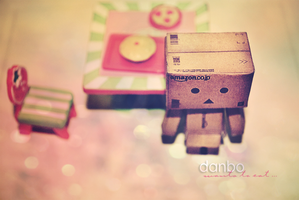 papercraft Danbo by hisaddiction