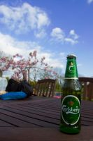 I love Carlsberg by Indigo-squirrel