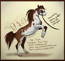 Pavo the Trick Horse by daughterofthestars