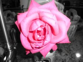 A Rose By Any Other Name... by BlackFlameVampire