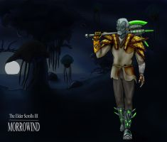 Morrowind - The Dark Elf Hortator and Nerevarine by Morgan-the-Rabbit