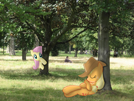 Under the Tree [PIRL] by AppleandMuffin