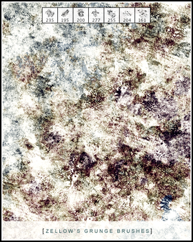 Grunge Brushes by Zellow