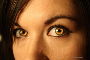 Yellow Eyes by claytons-girl-4-ever