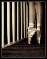 En Pointe Part One by Forestina-Fotos
