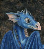Baby Blue Dragon by gothic-master