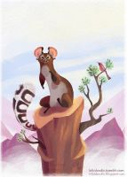 Ringtailed Cat by kiki-doodle