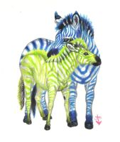 Zebras in Love by HonestAnxiety