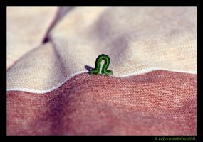 Caterpillar on the line 2 by colpewole