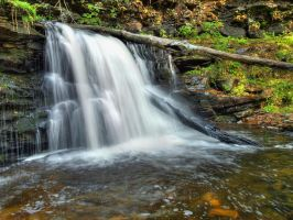 Ricketts Glen State Park 88 by Dracoart-Stock