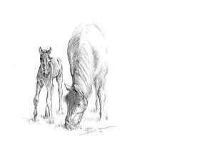 Frisian mare and foal sketch by BenPostmus
