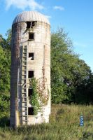 Neglected Erection by Crigger