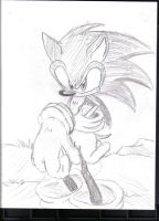 yet another sonic by Callihanclan