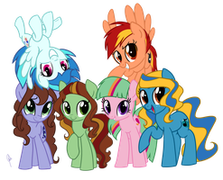 Our Mane Six by zoidledoidle