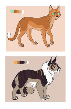 Fireheart and Tigerclaw by OwlCoat
