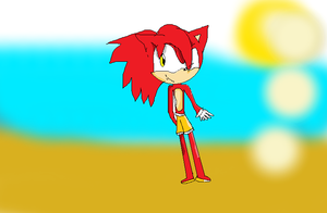 Flash the hedgie by XxMelissa-StarxX