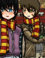 HP- Mesrs. Moony and Padfoot by Building-Bridges