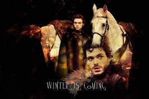 Robb Stark by StereoCatastrophe