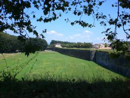 The City Wall of Lucca l by Shanna-the-Freak