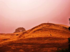 The Hills We Must Climb by Alonewithmyself