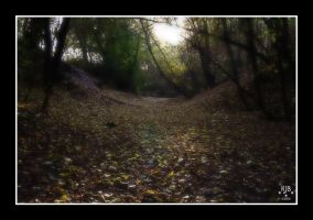 Autumn Path by drclaw27