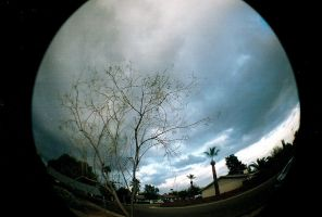 Fisheye Scene by hell0z0mbie