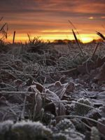 January Sunrise 3 by JohnnySix
