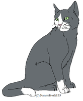Ash the Cat by PancakeShiners
