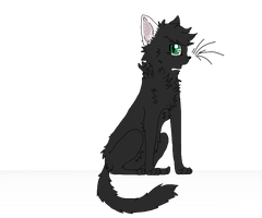 Storm as a Warrior Cat by Ieafeon