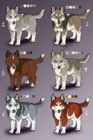 Mako X Whinona Pups: CLOSED by Sedillo-Kennels