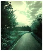 the way to the forest by Paik666