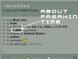 1000 Page views by mrwicked
