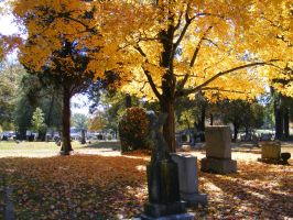 Autumn Cemetery 19 by DKD-Stock