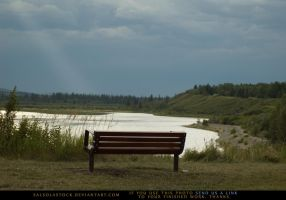 Lakeside Bench 2 by SalsolaStock