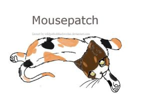 mousepatch by thenextbest