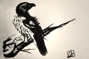 Bird Speed Paint - Indian ink by Carla-loves