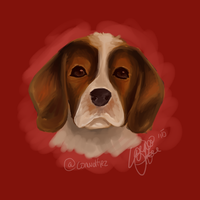 Beagle by conwolf