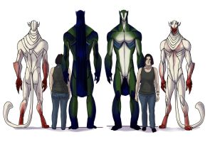 Ozmara:  Height Chart by Gone-Batty