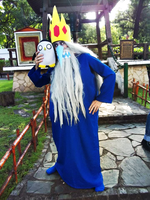Ice King Cosplay by ViluVector