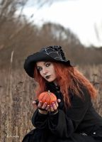 Halloween Witch by SandraVogel