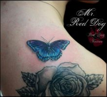 Blue Butterfly by Reddogtattoo