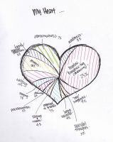 My Heart Analysis by anniecheng09