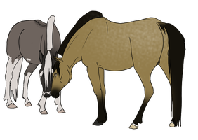 Bootsie and Centano by Rising-High-Ranch