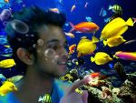 Touching life under water by ajishrocks