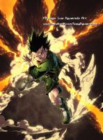 GON FREECSS from Hunter x Hunter! by marvelmania