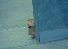 danbo2 by baybeehh