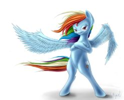 Rainbow Dash1 by SAyaal