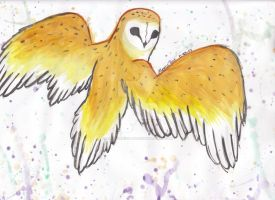 Barn owl water color painting by AlexusArt-is-back