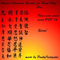 Chinese Character Brush Set by StaciTaylor